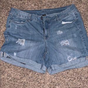 Women's Lane Bryant Shorts